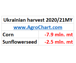 Ukrainian corn & sunflowerseed harvest 2020